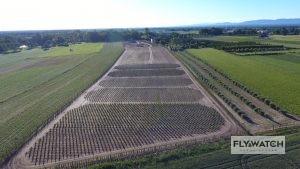 Inspekcje obszarów leśnych z powietrza - usługi dronem